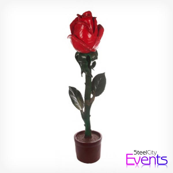 Giant Red Rose
